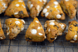 Paleo Breakfast Ideas - Cranberry Orange Scones