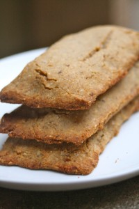 Paleo Breakfast Ideas - Not-ri Grain Bars