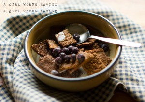 Paleo Breakfast Ideas - Paleo Cinnamon Square Crunch Cereal