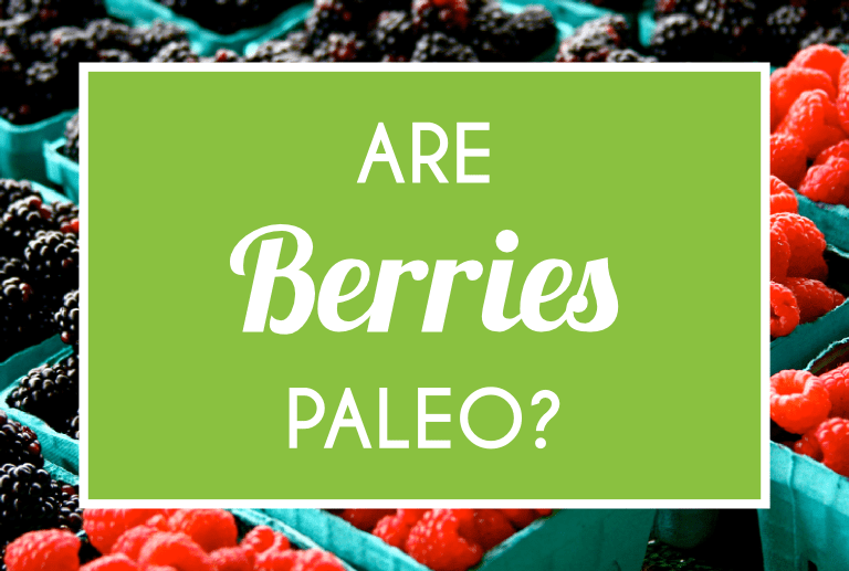 Are Berries Paleo