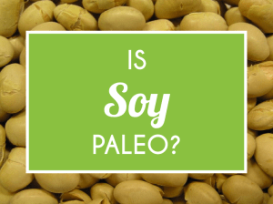 is soy paleo