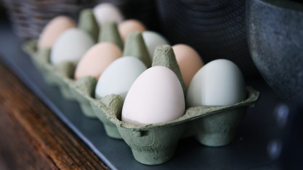 multicolored eggs in carton