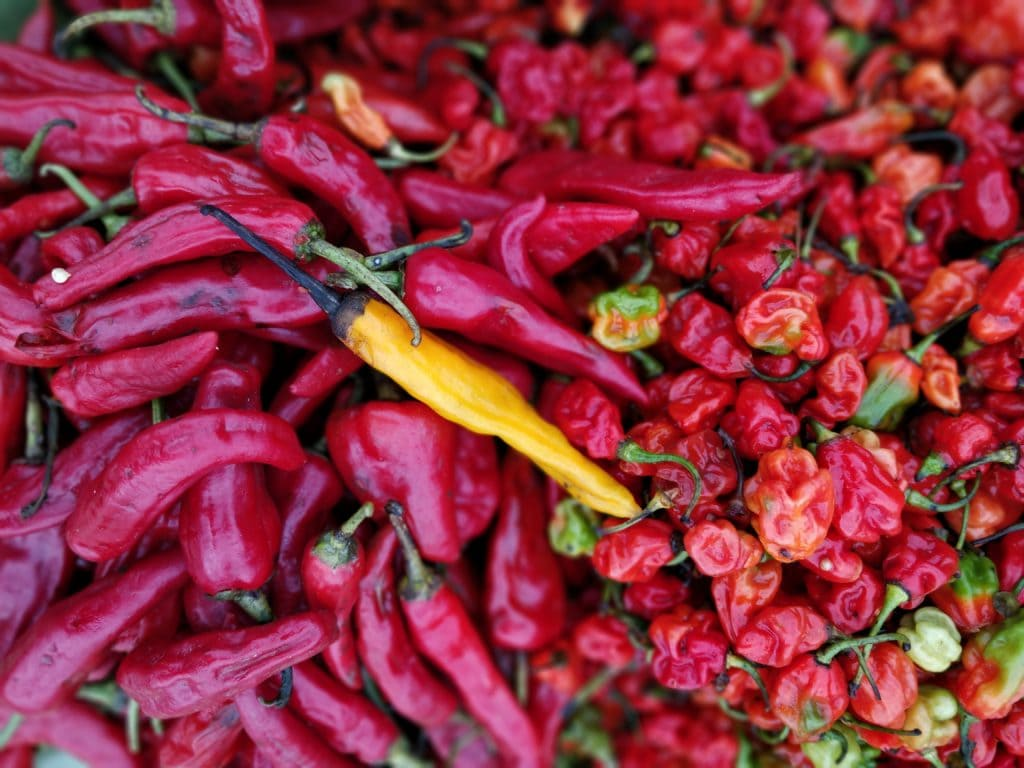 cayenne-peppers
