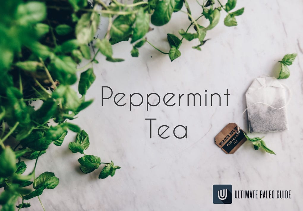 peppermint plant with peppermint tea bag